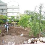 メイン庭園植栽