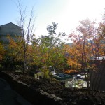 北側より庭園